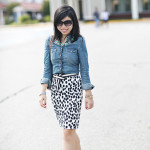 Wrentham Village: Chambray & Dalmation Prints