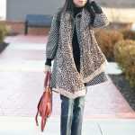 Neutral Prints: Chevron & Leopards
