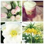 Instamix: Stormy Friday, Garden Wedding & B-more Engagement