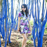 Houston Texas Warmth || Floral Drop Waist Ruffle Dress