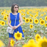 Sunflower Field | Cobalt Blue Summer Dress