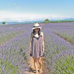 Fields of Lavender | Swing Dress + Warm Sun