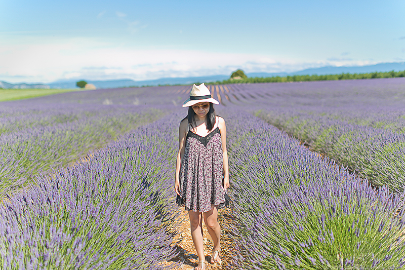 LaBelleMel_Provence_Lavender_Swing_Dress_1