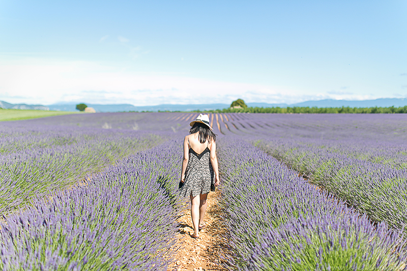 LaBelleMel_Provence_Lavender_Swing_Dress_5