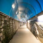 Travel Diary | Exploring Cinque Terre + Pisa