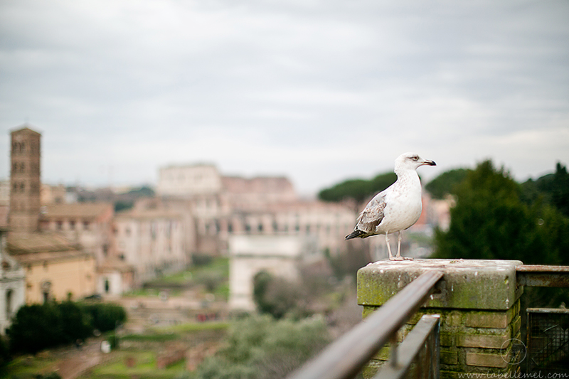 07LaBelleMel_Travel_Diary_Rome_2015