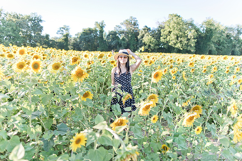 LaBelleMel_Sunflower_Fields_Casual_Daisy_Dress_2