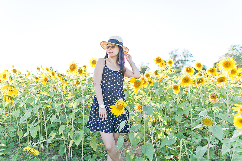 LaBelleMel_Sunflower_Fields_Casual_Daisy_Dress_3
