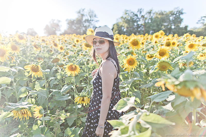 LaBelleMel_Sunflower_Fields_Casual_Daisy_Dress_4