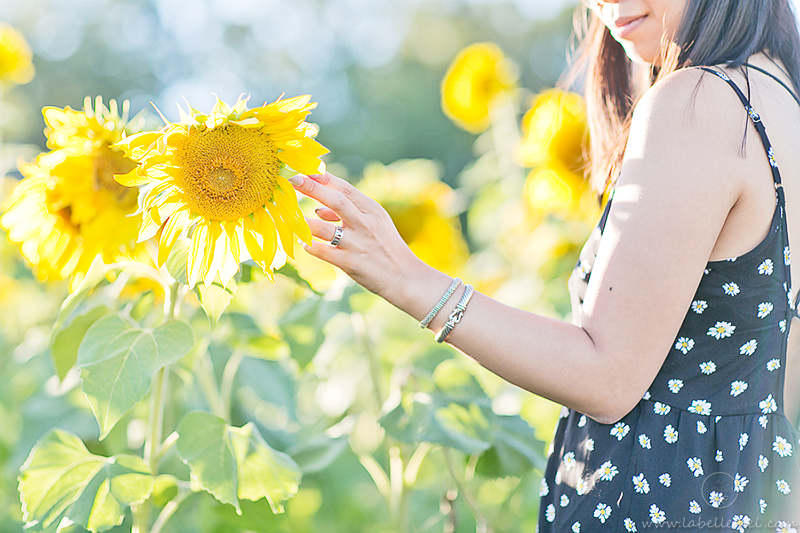 LaBelleMel_Sunflower_Fields_Casual_Daisy_Dress_8