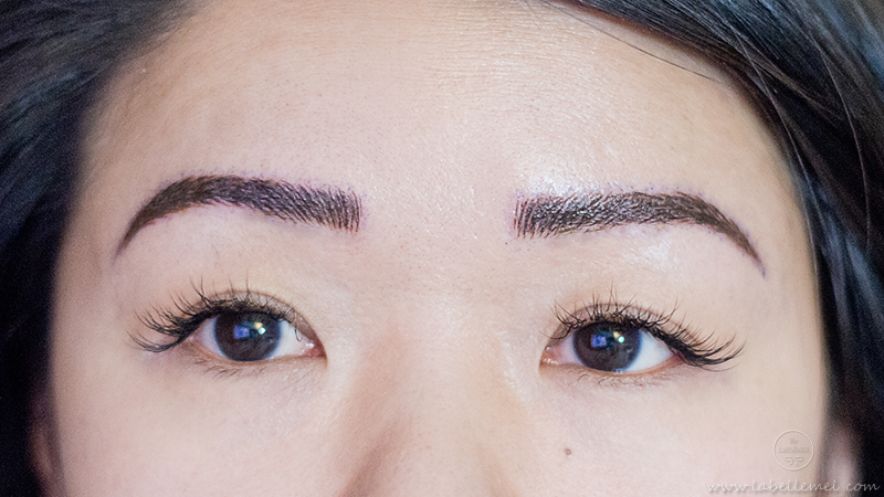 LaBelleMel_Microblading_Brow_Update_1