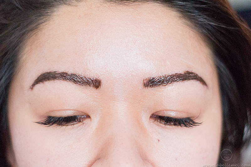 LaBelleMel_Microblading_Brow_Update_2