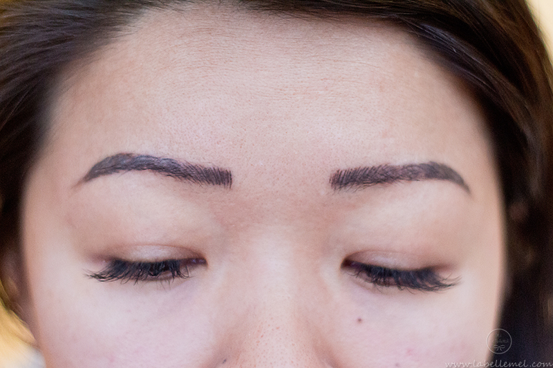 LaBelleMel_Microblading_Brow_Update_3