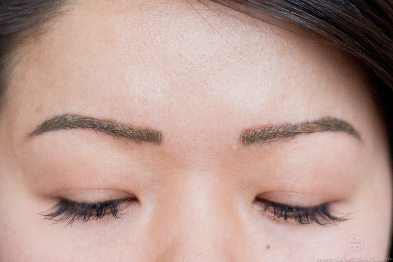 LaBelleMel_Microblading_Brow_Update_4