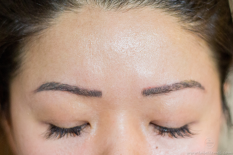 LaBelleMel_Microblading_Brow_Update_5
